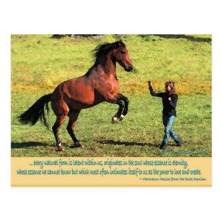 Cartão Postal Citações da parte traseira de Patrik