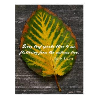 Cartão Postal Citações de Emily Bronte da folha do outono