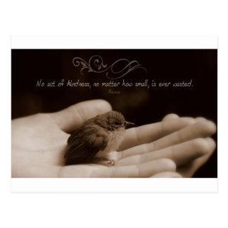 Cartão Postal Citações inspiradas da bondade por Esopo