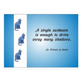 Cartão Postal Citações voluntárias do gato e do raio de sol da
