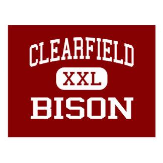 Cartão Postal Clearfield - bisonte - área - Clearfield