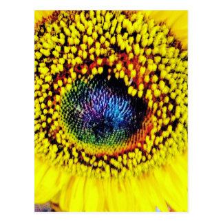 Cartão Postal Close up amarelo