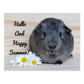 Cartão Postal Cobaia feliz do verão