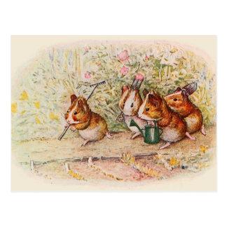 Cartão Postal Cobaias que plantam no jardim