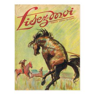 Cartão Postal Cobrir, Lisez-Moi, vaqueiro, cavalo do rodeio