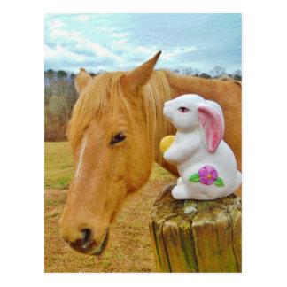 Cartão Postal Coelho branco e cavalo amarelo louro