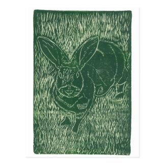 Cartão Postal Coelho de coelho cinzento na grama