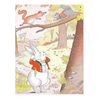 Cartão Postal Coelho e esquilos ruidosos