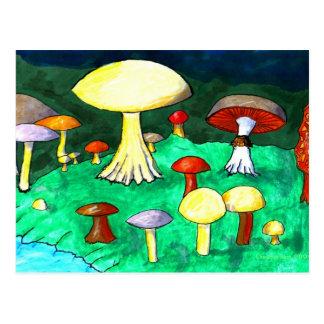 Cartão Postal Cogumelos