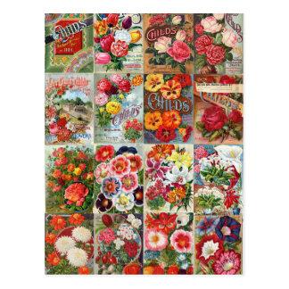 Cartão Postal Colagem do jardim dos pacotes da semente de flor