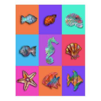 Cartão Postal Coleção de Shell