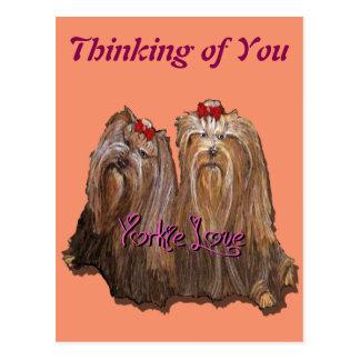 Cartão Postal Coleção do amor de Yorkie