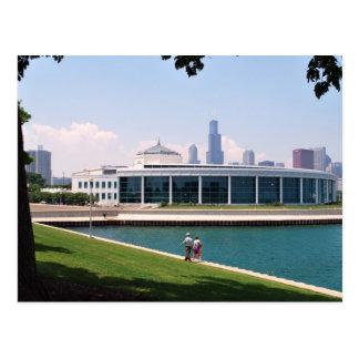 Cartão Postal Coleção do aquário de Chicago Shedd