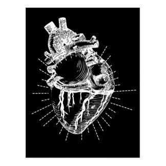 Cartão Postal Coleção preta & branca do coração anatômico