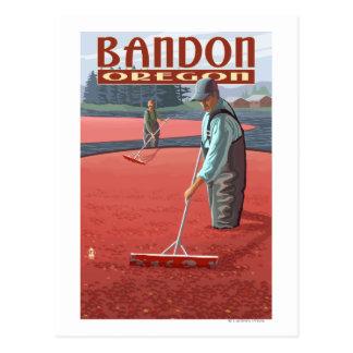 Cartão Postal Colheita dos pântanos do arando - Bandon, Oregon