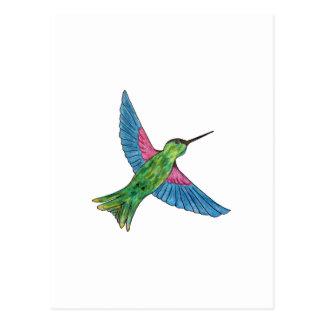 Cartão Postal Colibri