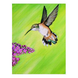 Cartão Postal Colibri e Lilac
