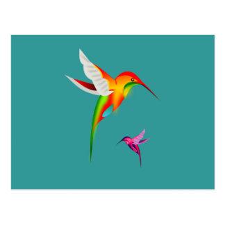 Cartão Postal Colibris bonitos (Colibri)