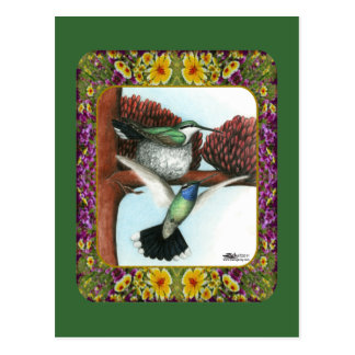 Cartão Postal Colibris e flores #3