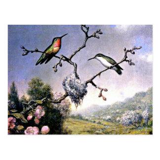 Cartão Postal Colibris e flores de Apple