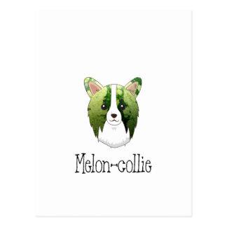 Cartão Postal collie do melão