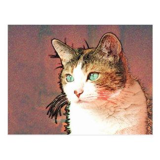 Cartão Postal Colourkat