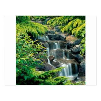 Cartão Postal Columbia Britânica de Vancôver da cachoeira