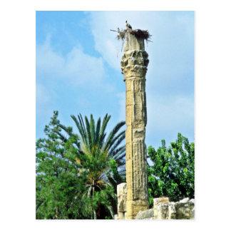 Cartão Postal Coluna romana, ninho da cegonha, Perge