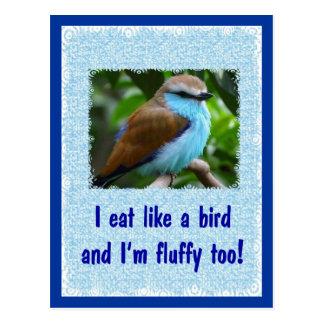 Cartão Postal Coma como um pássaro 2