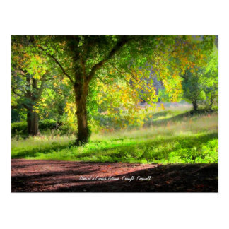Cartão Postal Começo de um outono Cornish, montagem Edgcumbe