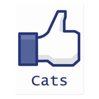 Cartão Postal Como gatos