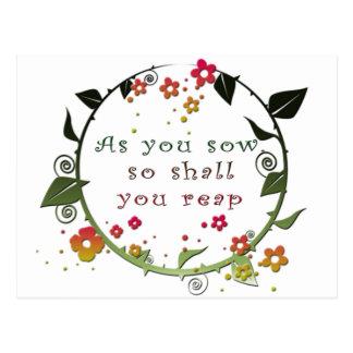Cartão Postal Como você semeia