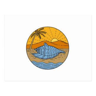 Cartão Postal Conch Shell na árvore de coco segunda-feira de Sun