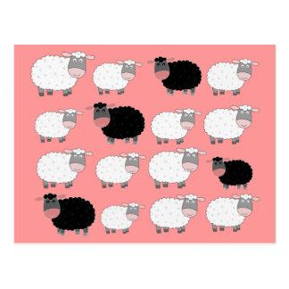 Cartão Postal Contando carneiros