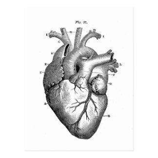Cartão Postal Coração anatômico preto
