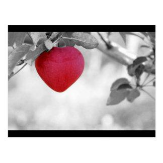 Cartão Postal Coração vermelho dramático Apple dado forma