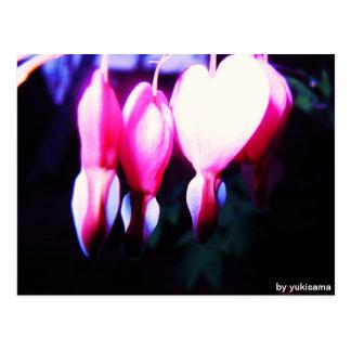 Cartão postal - corações de flor