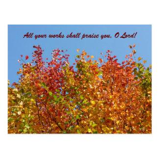 Cartão Postal Cores 4 do outono