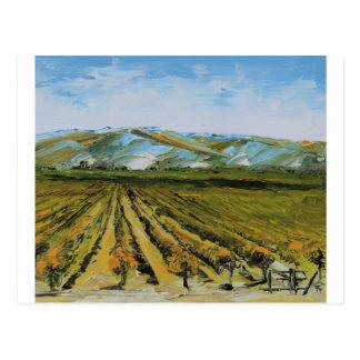Cartão Postal Cores de Napa Valley, região vinícola Califórnia