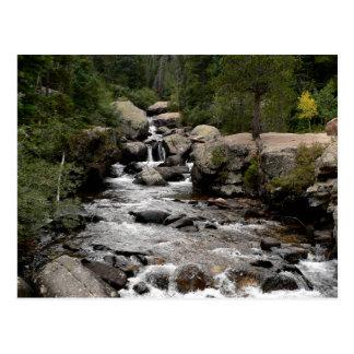 Cartão Postal Córrego na bacia selvagem