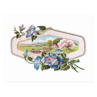 Cartão Postal Corriolas e uma casa no país