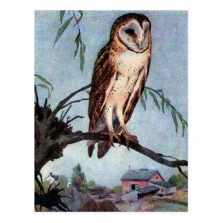 Cartão Postal Coruja, casa da quinta e celeiro de celeiro