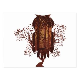 Cartão Postal Coruja e floresta Landscape2 do outono