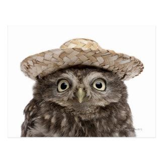 Cartão Postal Coruja pequena que veste um chapéu de palha -