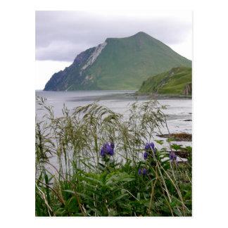 Cartão Postal Coxcomb da montagem, ilha de Unalaska