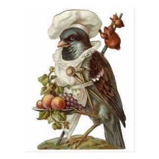 Cartão Postal Cozinheiro chefe do pássaro