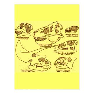 Cartão Postal Crânios do dinossauro