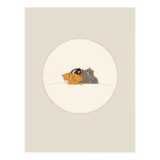 Cartão Postal Criaturas de sono