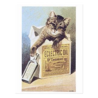 Cartão Postal Cromo de colecção elétrico do gatinho do óleo