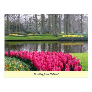 Cartão Postal Cumprimento de Holland
